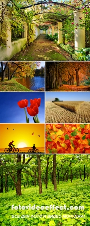 Shutterstock Mega Collection vol.1 - Nature