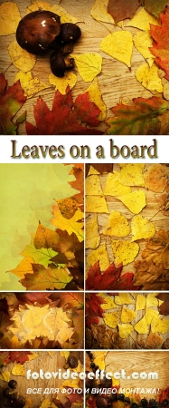 Stock Photo: Leaves on a board