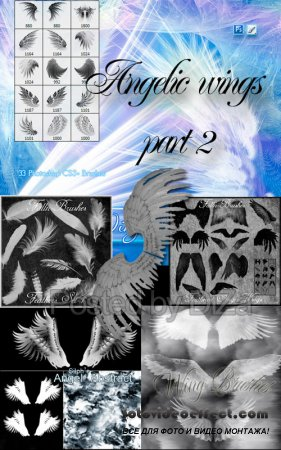 Angelic wings part 2
