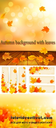 Stock: Autumn background with leaves